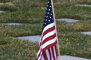 american flag graves veterans day