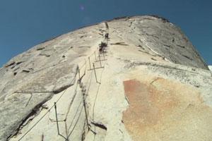 Climbing the Cables by James Matsubayashi