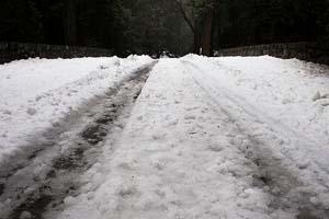 Snowy roads Yosemite Orin Zebest 2009