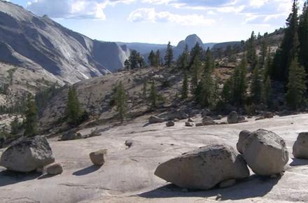 Glacial erratics in Yosemite National Park.